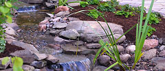 Yard Water Features